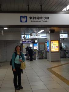 Shinkansen to Katahara