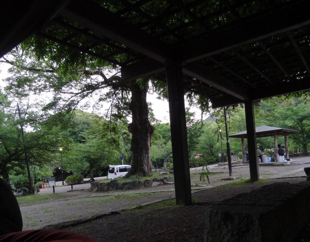 Kyoto Urban Camping