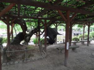 Niigata Urban Camping Japan