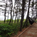 Niigata Urban Camping