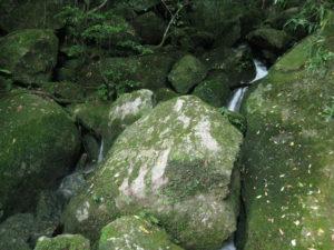 Onaida Trail