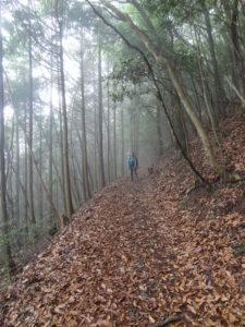 Kumano Kodo Pilgrimage